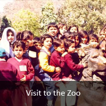 Visit-to-the-Zoo